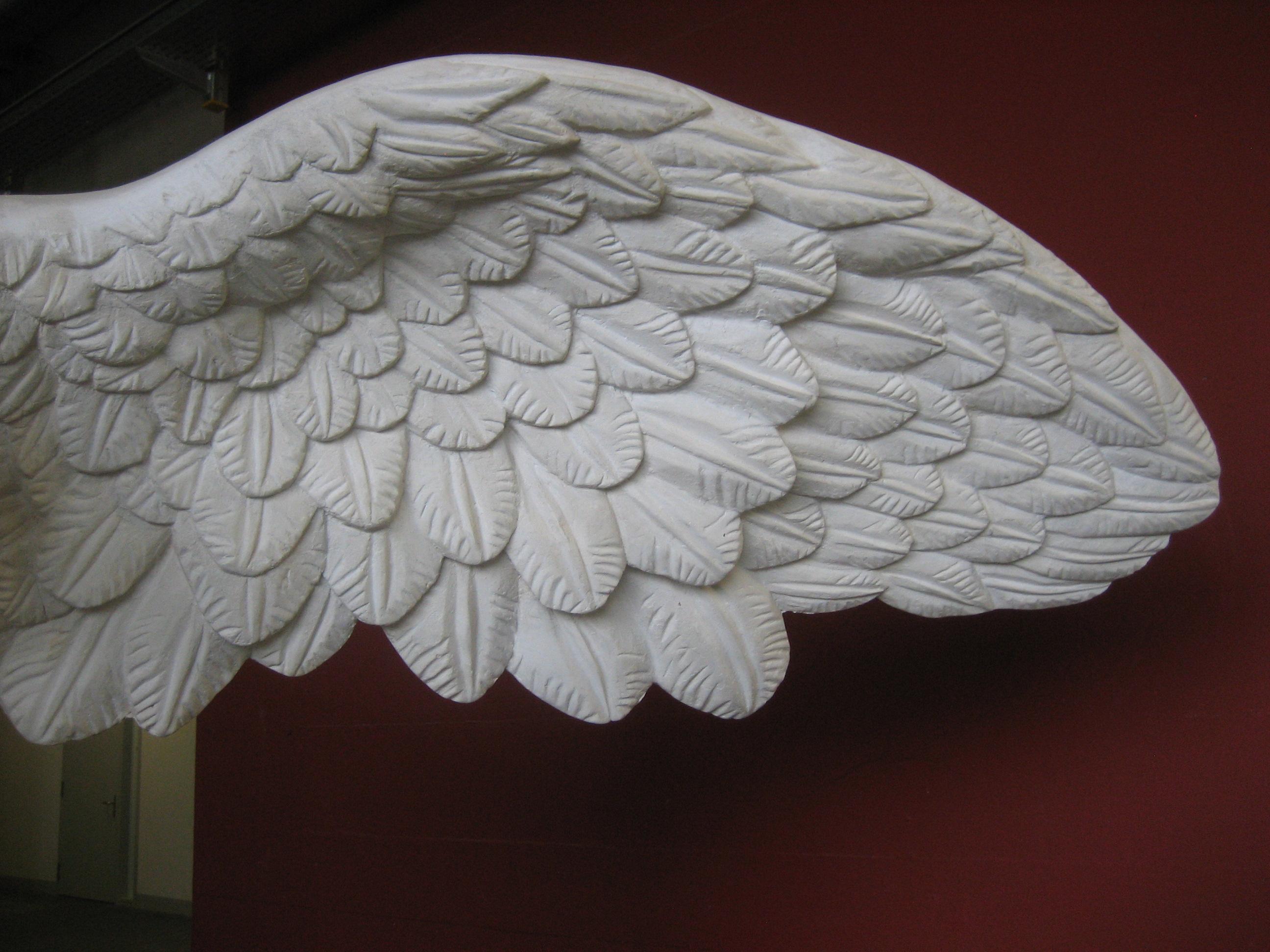 IMG_1566.JPG, NIke Flügel